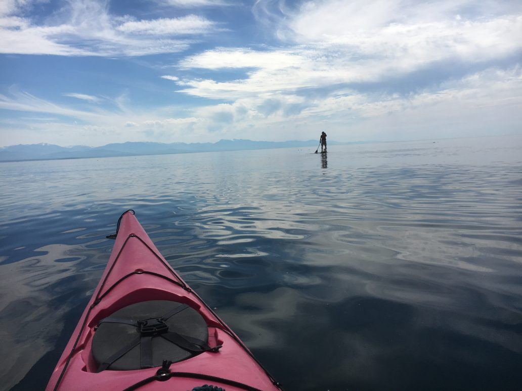 paddle board and kayak