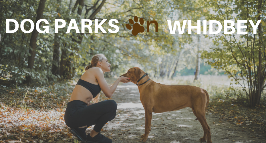 Dog Parks on Whidbey